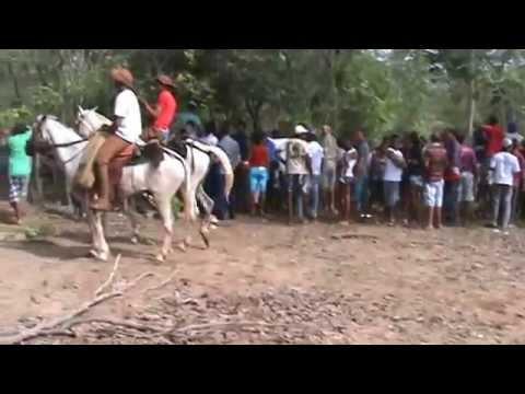 carlos filmagem e produção parque de vaquejada em palmeirais pi dia 07/12/13
