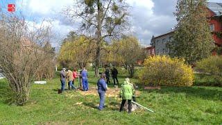 Náhled - Učitelé ze SŠTZ Mohelnice sází stromy