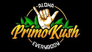 The Marijuana Misfits Smoke Sesh With Primo Kush (Live) 6:30pmPT by Primo Kush