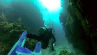 Video GoPro: Scuba Diving with Sharks in Ambergris Caye, Belize MP3, 3GP, MP4, WEBM, AVI, FLV Juni 2018