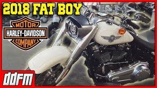 7. 2018 Harley Davidson FatBoy Walkaround at Harley Davidson of Tucson
