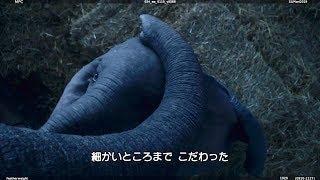 フルCGの可愛いダンボ、撮影の裏側にせまった特別映像/映画『ダンボ』メイキング映像
