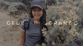 Video Pendakian Gunung GEDE PANGRANGO via PUTRI - CIBODAS (GPS Track) MP3, 3GP, MP4, WEBM, AVI, FLV Februari 2019