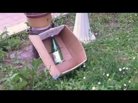 Pistola Aria Compressa Beretta -  Tiro al Bersaglio Bottiglia di Vetro