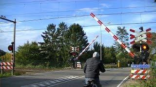 Locatie: LingedijkTraject: Utrecht - Geldermalsen/'s-Hertogenbosch, Geldermalsen - DordrechtSoort: AHOBRode lichten: 10Bellen: 4Bomen: 2Andreaskruisen: 2Passeren:- DB goederentrein richting UtrechtVideo is gemaakt op 08-10-16