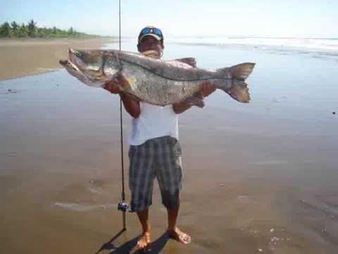 Pesca Costa Rica