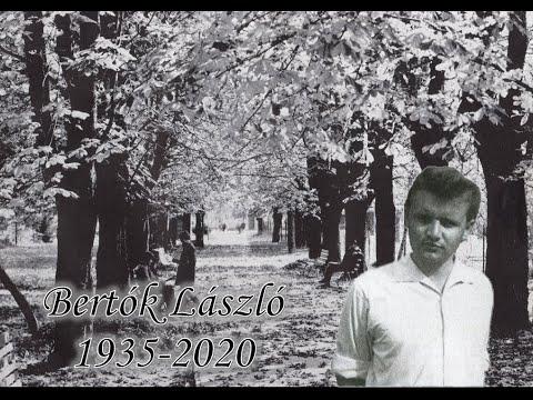 In memoriam Bertók László