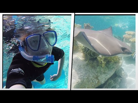 UNDERWATER ADVENTURE AT DISCOVERY COVE