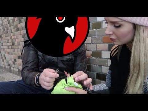 Saving Pigeons w/ Black Pigeon Speaks