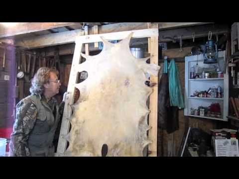 how to dye rawhide