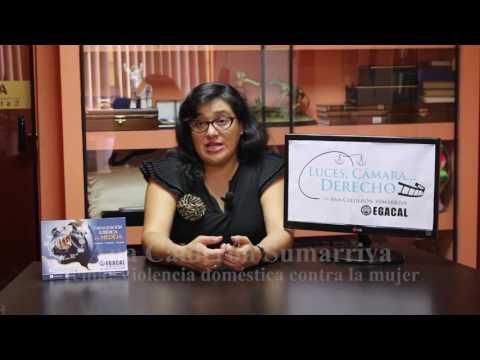 Programa 15 - Violencia doméstica contra la mujer - Luces Cámara Derecho - EGACAL