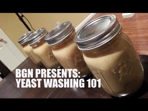 Yeast Harvesting and Washing 101 | Beer Geek Nation Homebrew Videos
