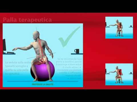 SpinaliS - Seduta attiva per una schiena sana