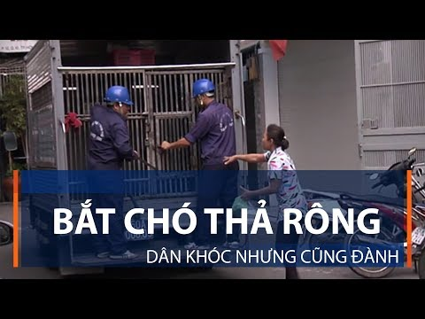 Mỹ - Hàn chung tay trừng phạt Triều Tiên | VTC1 - Thời lượng: 78 giây.