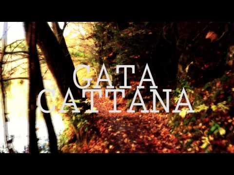 """Os presentamos """"Efemérides"""", de Gata Cattana"""