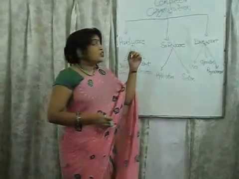 Learn computer fundamental in hindi computer organization-1