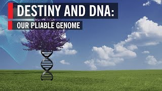 Destiny And DNA:: Our Pliable Genome