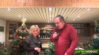 #920 Weihnachtsdekoration - Tischdekoration mit Äpfeln (Redloves)