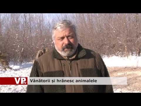 Vânătorii și hrănesc animalele