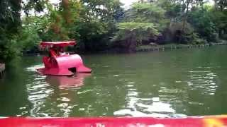 Bangkok Zoo Lake Thailand 2009