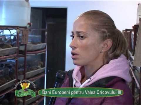 Reportaj VP TV – GAL Valea Cricovului III – 27 noiembrie 2014