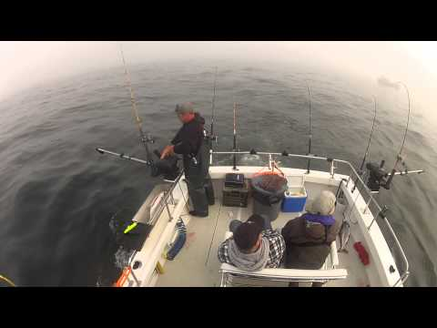 North Cal Sportfishing - Salmon fishing in Bodega Bay on