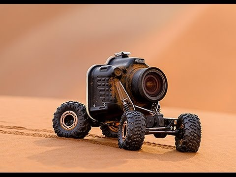 Photographer Gets Lion CloseUps With RC Camera