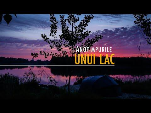 Anotimpurile unui lac