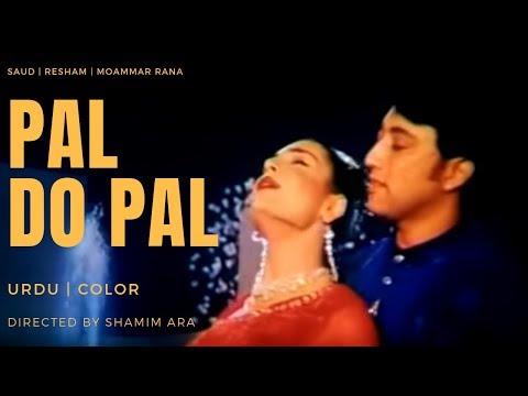 Video PAL DO PAL   Moammar Rana, Resham, Meera, Saud, Neha   FILMY DUNYA download in MP3, 3GP, MP4, WEBM, AVI, FLV January 2017