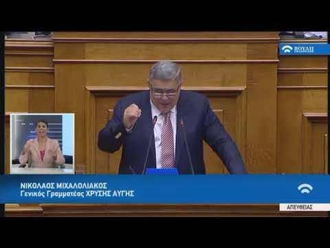 Ν.Μιχαλολιάκος(Γεν.Γραμ.Χρυ.Αυγής)(Συζήτηση προ Ημερ.Διατάξεως γιά την Οικονομία)(05/07/2018)