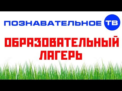База для образовательного лагеря Познавательного ТВ (Артём Войтенков) - DomaVideo.Ru