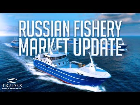 3MMI - Russian Market Update; Salmon Demand Higher, Inventories Presold, Upward Price Trend