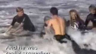 ing Shark Attack with Two Great White Sharks (4.5 meters) - www.2besaved.com