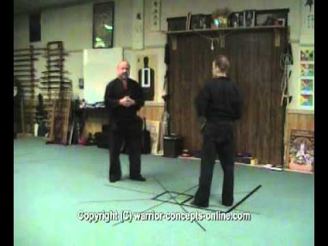 Ninjutsu Training – Skill Progression in Ninpo Taijutsu (The Ninja's Self-Defense Method) (Part 4)