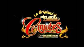 Mi buena Suerte La Original Banda Coyotes de Aguascalientes