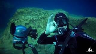Scuba diving in Mauritius in Flic en Flac with Sundivers. Dive site: Big Rock.