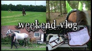 ÅBEN FOR INFO... Så er der en weekend vlog fra igår :) Beklager at den blev meget lang, men når jeg skal nå 4 heste på en hel...