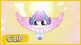 Flurry Heart's Crystalling - MLP: Friendship Is Magic [Season 6]
