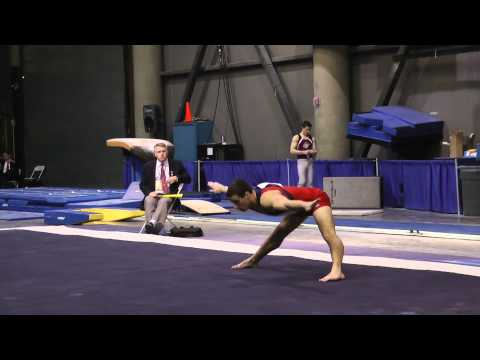 Jake Dalton, Floor, 2011 Winter Cup Day 1, 15.90