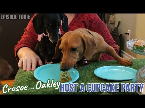 Episode 4: Crusoe and Oakley Host a Cupcake Party