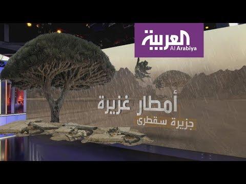 العرب اليوم - تعرّف على العاصفة التي تكونت في بحر العرب وستتحول إلى إعصار