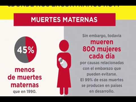 Compartiendo datos y estadísticas…