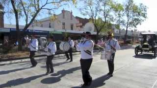 Scone Australia  city photos : Horse festival parade - Scone, NSW, Australia