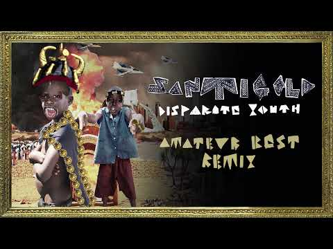 Santigold - Disparate Youth [Amateur Best Remix]