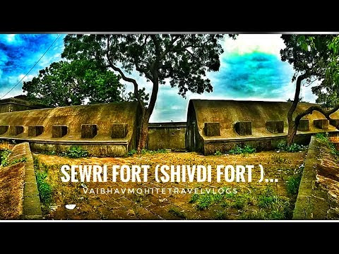 Sewri Fort | Mumbai Fort Part 2 | शिवडी  किल्ला # Travel and food vlogs