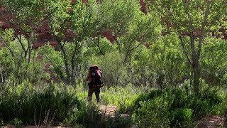 Nonton Colorado Plateau 2017: (Day 2) Backpacking with an 8x10 Camera Film Subtitle Indonesia Streaming Movie Download
