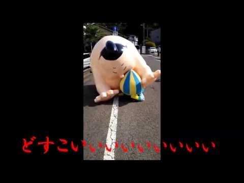 ~ミナモ奮闘記~ご当地キャラこども夢フェスタinしらかわ2016