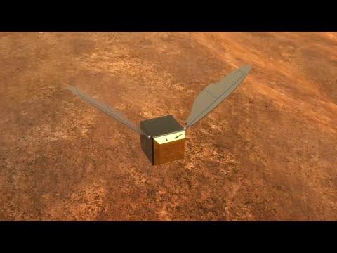 Pläne der Nasa: Roboter-Bienen auf dem Mars