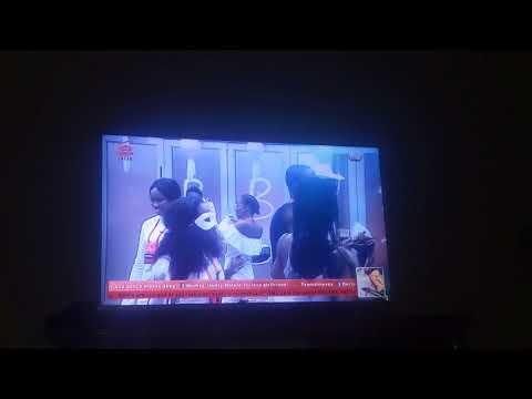 big brother Naija double wahala live stream