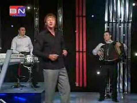 Ljubisa Vasiljevic - Vila bana sa planine zvala